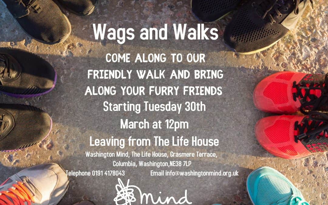 Wags and Walks Pet Walking Group