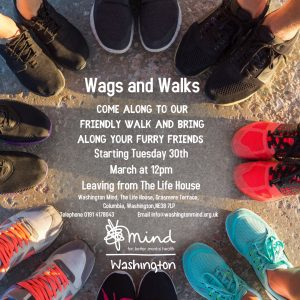 Wags and Walks - Walking Group @ The Life House